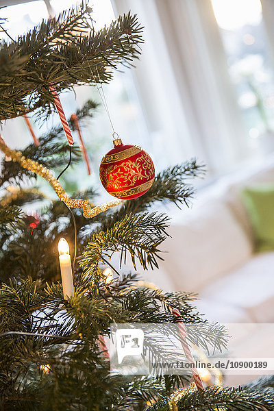 Sweden  Christmas decorations on tree
