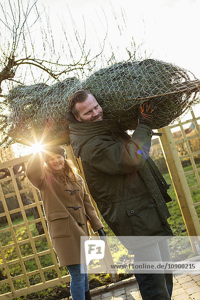 Sweden  Sodermanland  Alvsjo  Man with daughter (12-13) carrying tied up fir tree