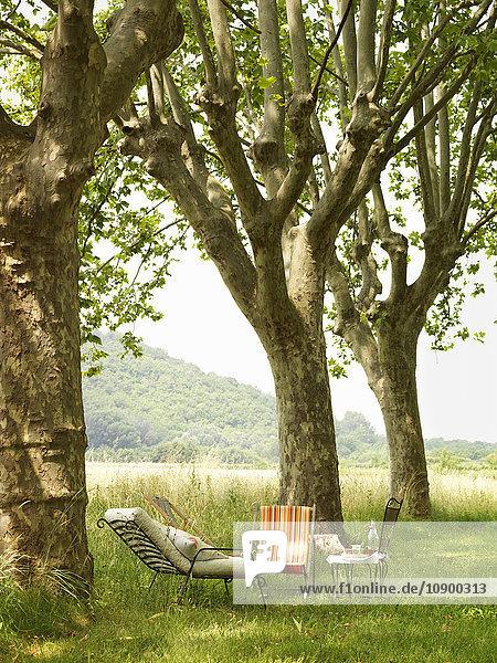 Schweden  Vastergotland  Sessel unter Bäumen im Garten