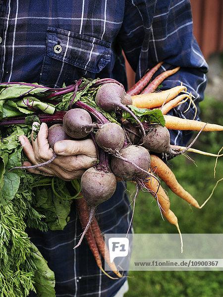 Mann mit einem Haufen Gemüse