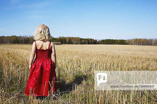 Schweden  Vastra Gotaland  Gullspang  Mädchen (4-5) im roten Kleid stehend im Feld