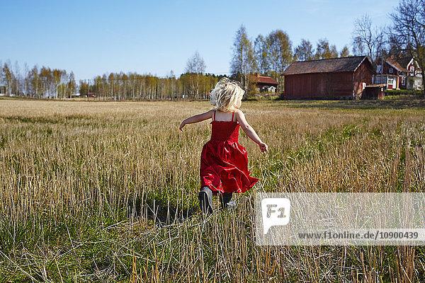 Schweden  Vastra Gotaland  Gullspang  Mädchen (4-5) in rotem Kleid auf dem Feld