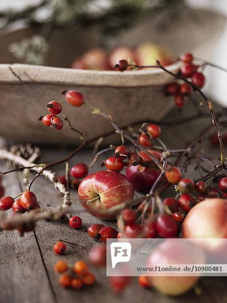Schweden  Vastergotland  Herbstfrüchte auf dem Tisch