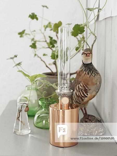 Schweden  Vastergotland  Vogelfigur und elektrische Lampe auf dem Tisch