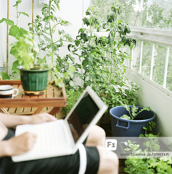 Finnland  Helsinki  Uusimaa  Mittlerer Teil des Mannes  der im Wintergarten sitzt und einen Laptop benutzt.