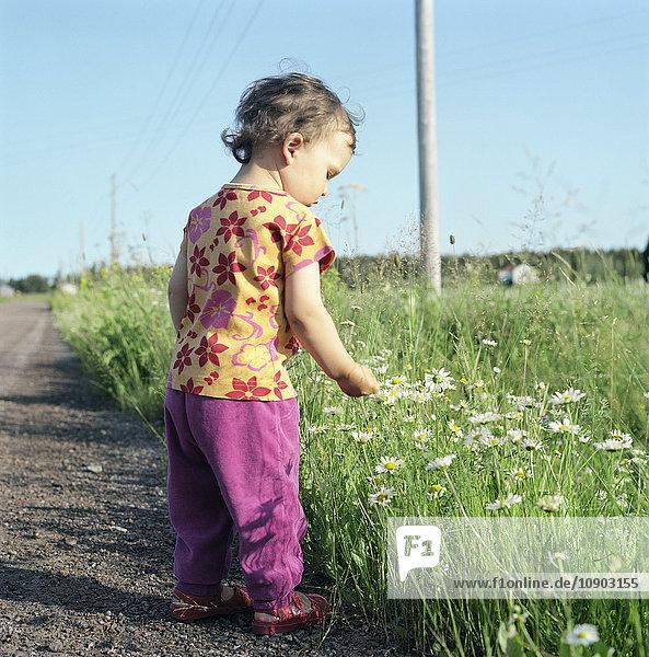 Finnland  Uusimaa  Lapinjarvi  Girl (2-3) beim Betrachten von Wildblumen auf dem Feldweg