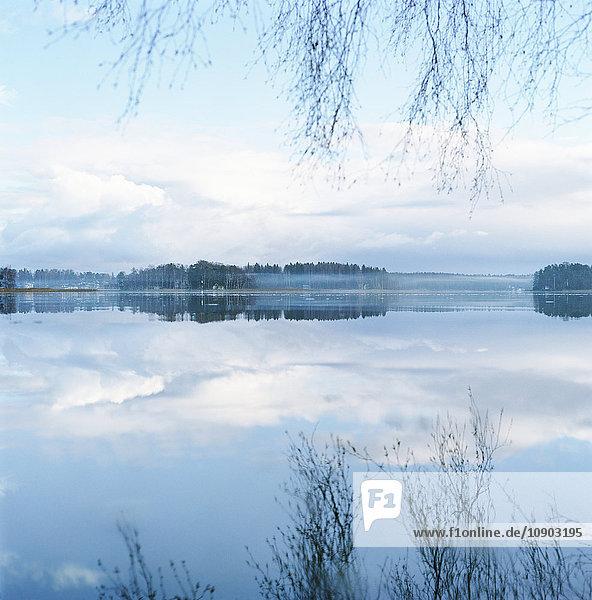Finnland  Helsinki  Roihuvuori  Stromsinlahti  überhängende Äste und Wolken  die sich im Wasser spiegeln.