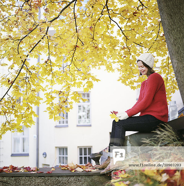 Finnland  Helsinki  Kallio  Frau unter Ahorn  mit zwei gefallenen Blättern