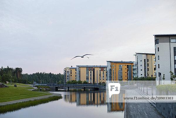 Finnland  Uusimaa  Helsinki  Vuosaari  Fliegende Vögel gegen Wohngebäude am Kanal bei Dämmerung