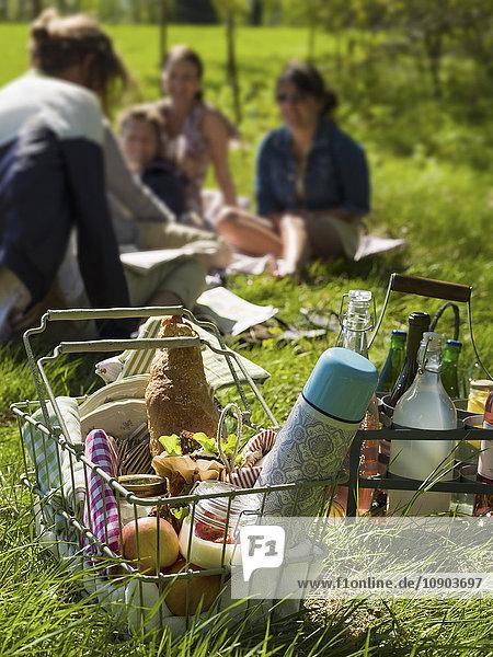 Schweden  Skane  Drahtkorb mit Essen und Thermoskanne  Frauen sitzen auf Gras im Hintergrund