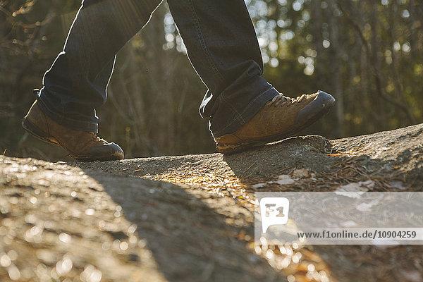 Finnland  Esbo  Kvarntrask  Niederquerschnittsaufnahme eines jungen Mannes  der im Wald spazieren geht.