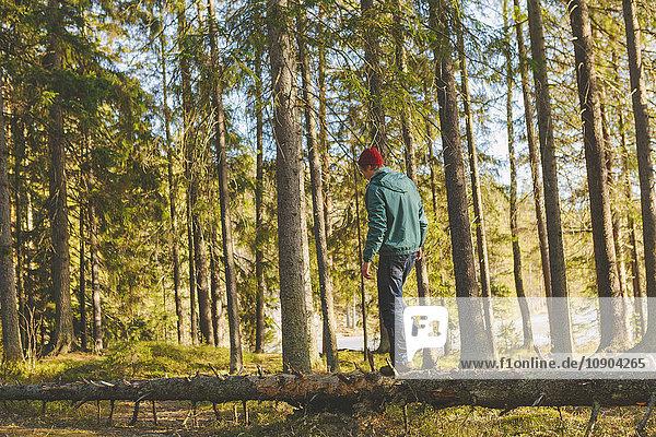 Finnland  Esbo  Kvarntrask  Junger Mann  der auf einem Baumstamm im Wald läuft.