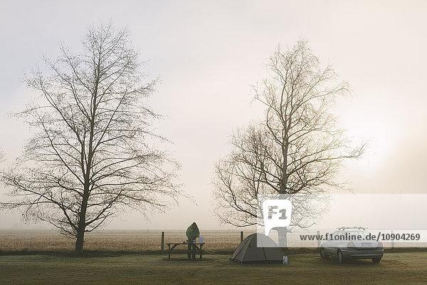 Neuseeland  Springfield  Campingplatz am Feldrand mit zwei kahlen Bäumen  Aufbauzelt  geparktes Auto und Mann am Holztisch.