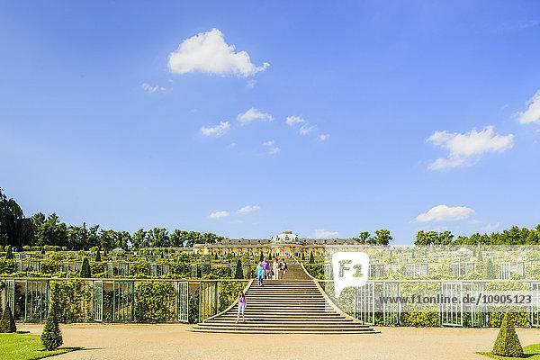 Deutschland  Brandenburg  Potsdam  Schloss Sanssouci  Treppe im Garten