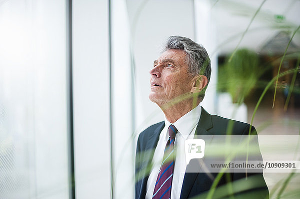Senior businessman looking up at a window