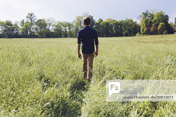 Back view of man walking on a meadow