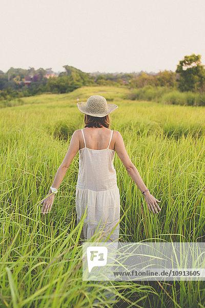 Rückansicht der Frau in Sommerkleid und Hut in der Natur