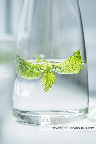 Glasflasche Wasser mit Zitronenmelisse aromatisiert