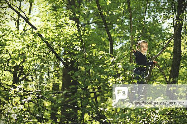Mädchen im Wald klettern im Baum