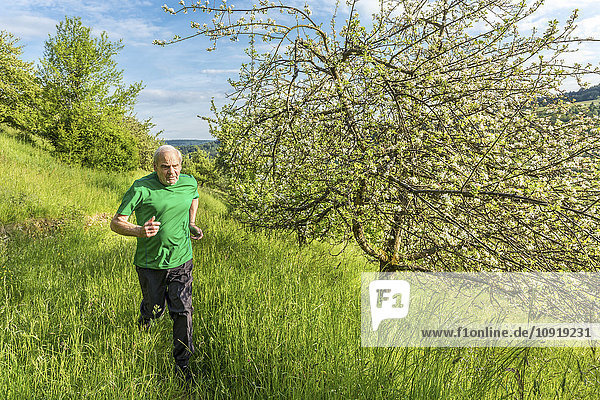 Seniorenjogging in der Natur