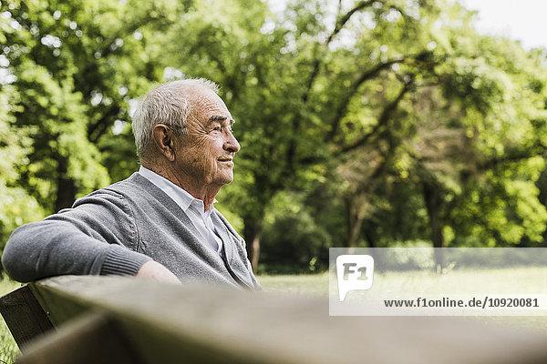 Lächelnder älterer Mann sitzt auf einer Bank in der Natur