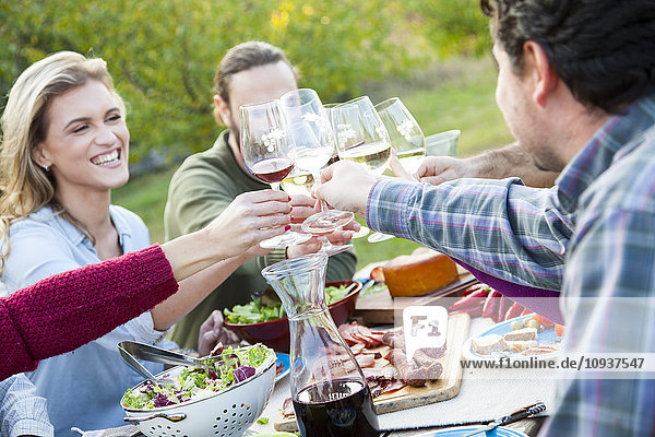 Group of friends drinking wine on garden party