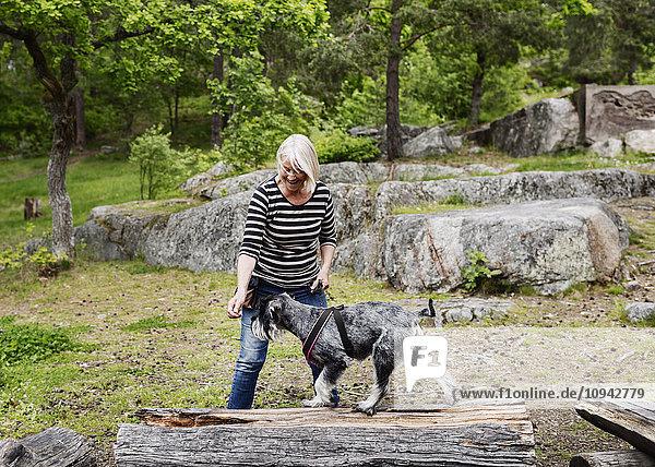 Verspielte Seniorenfrau mit Hund beim Spaziergang auf dem Feld