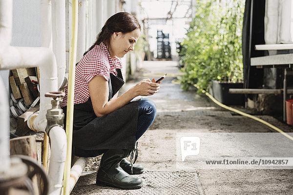 Gärtnerin Textnachrichten auf dem Handy im Gewächshaus