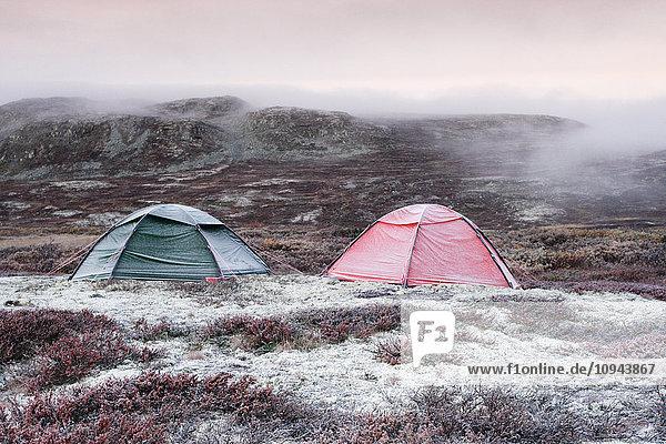 Zelte auf dem Hardangervidda Berg