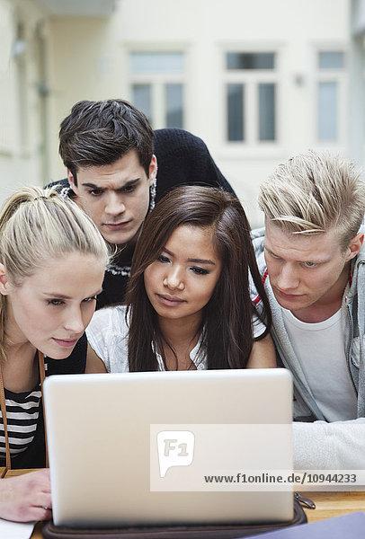 Junge schöne Freunde  die auf den Laptop schauen