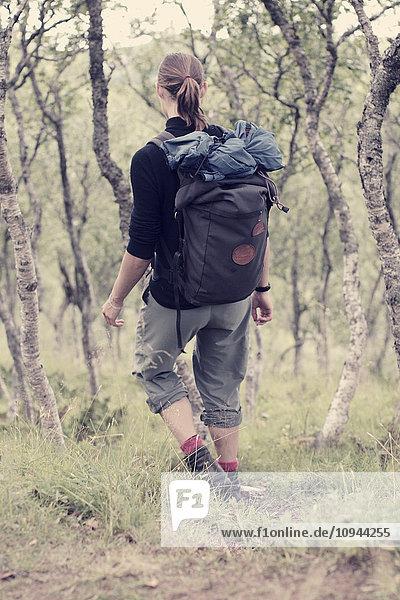 Rückansicht der Wanderin auf dem Feld im Wald