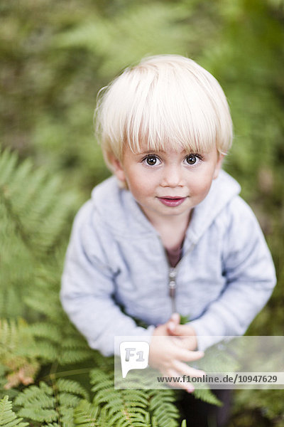 Portrait of baby boy in ferns