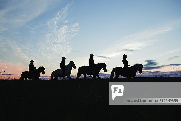 Silhouettes of people riding horses