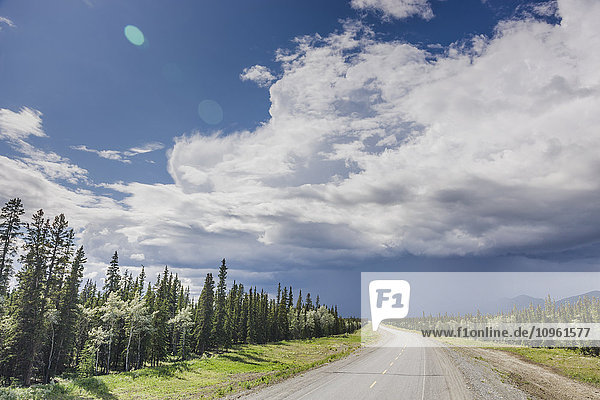 Scenic view of the Alaska Highway near Whitehorse with rain clouds in the distance  Yukon Territory  Canada  Summer