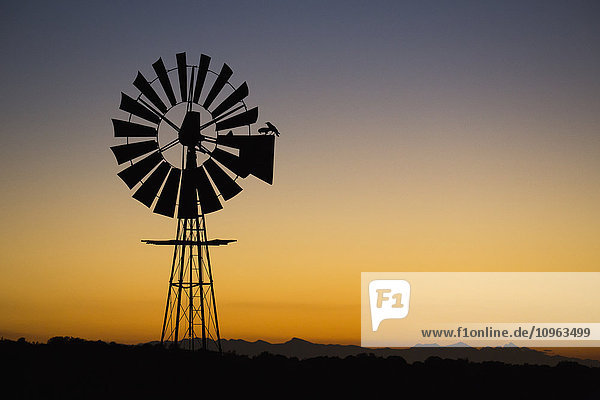 'Windmill at sunset; South Africa'