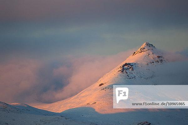 'Light from the sunset illuminates the mountains along the Dempster Highway  northern Yukon; Yukon  Canada'