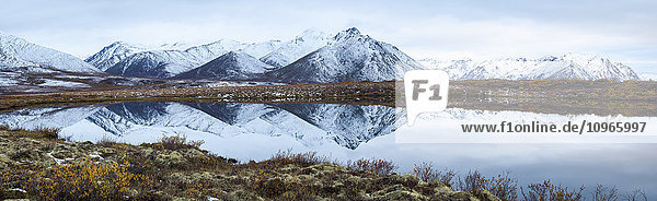 'Mount Adney reflected in a pond along the Dempster Highway in the northern Yukon; Yukon  Canada'