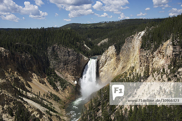 'Lower Canyon falls  Yellowstone National Park; Wyoming  United States of America'