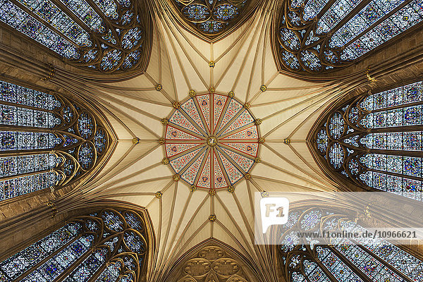'Architectural detail of York Minster ceiling; York  Yorkshire  England'