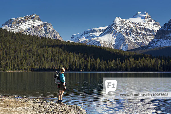 'Female hiker standing along a rocky shoreline of a mountain lake with snow peaked mountains reflecting in lake and blue sky  Banff National Park; Alberta  Canada'