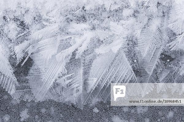 'Ice crystals on ice; Manitoba  Canada'