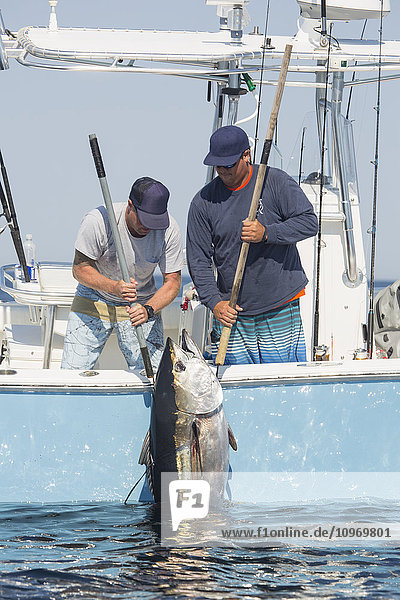 'Day on the water fishing for blue fin tuna; Cape Cod  Massachusetts  United States of America'