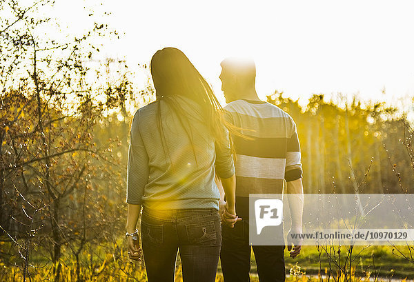 'A young Asian couple holding hands while walking in a park in autumn and enjoying the warmth of the sunlight during the early evening; Edmonton  Alberta  Canada'