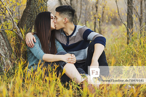 'A young Asian couple enjoying a romantic time together outdoors in a park in autumn and kissing each other while sitting under a tree; Edmonton  Alberta  Canada'