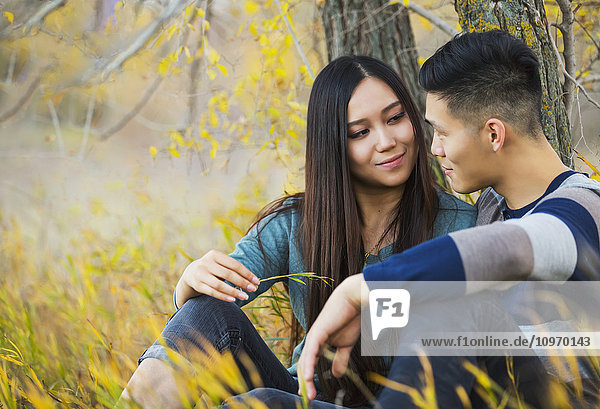 'A young Asian couple enjoying a romantic time together outdoors in a park in autumn sitting under a tree and looking into each other's eyes; Edmonton  Alberta  Canada'