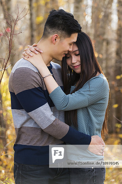 'A young Asian couple enjoying a romantic time together outdoors in a park in autumn and embracing each other in the warmth of the sunlight; Edmonton  Alberta  Canada'