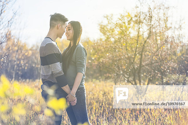 'A young Asian couple enjoying quality time together outdoors in a park in autumn and holding hands in the warmth of the sunlight during the early evening hours; Edmonton  Alberta  Canada'