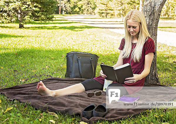 'A young woman spending personal time in Bible study in a park during autumn; Edmonton  Alberta  Canada'