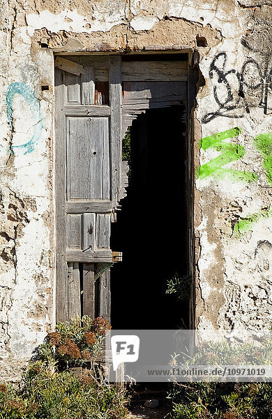 'A broken wooden door on a wall covered with graffiti  near Chiclana de la Frontera; Andalusia  Spain'