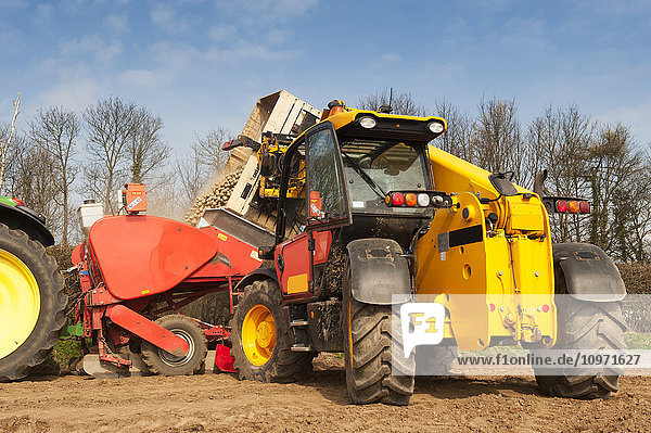 Tipping box of seed potato into a Grimme seed drill using a JCB load-all; Yorkshire  England